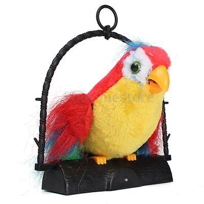 Talking Parrot Talk Back Imitates And Repeats What You Say Kids Gift Funny Toy