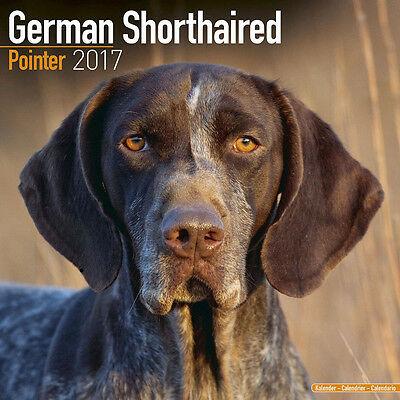 "German Shorthaired Pointer 2017 Wall Calendar by Avonside (12"" x 24"" when open)"