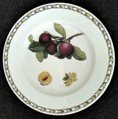Queen's fINE Bone China Royal Horticultural Society Fruit Plate Plum