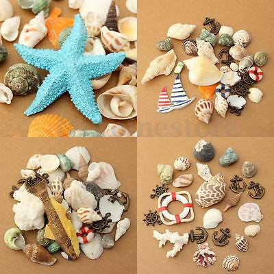 Beach Mixed SeaShells Mix Natural Shells Craft pendant Aquarium Fish Tank Decor