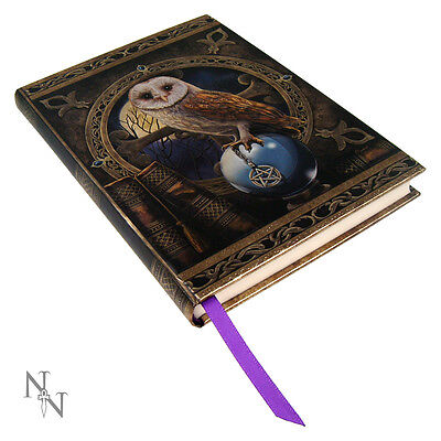 Spell Keeper OWL Holding Pentagram Talisman Book of Shadows, Journal, Diary!