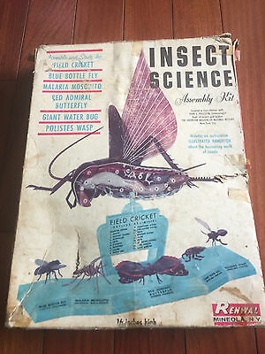 1960s Insect Science Renwal Vintage Old Field Cricket Model Display Assembly Kit