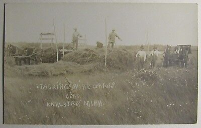 Postcard, Real Photo, Karlstad, Minnesota, farmers stacking wire grass