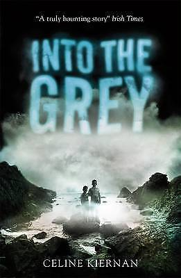 Into the Grey by Celine Kiernan (Paperback)