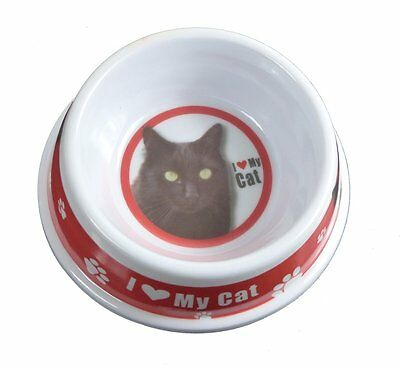 Black Cat Pet Bowl, Food or Water, Gifts for Pet Owners, Kitchen Items AB042