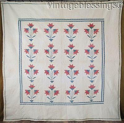 Antique c1860 Civil War Carolina Lily Trapunto Chintz QUILT So Early!