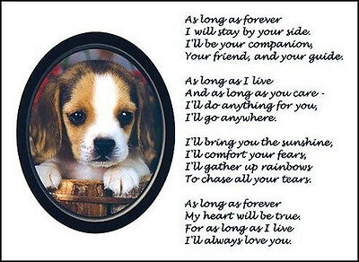 "Beautiful BEAGLE print ""AS LONG AS FOREVER"" picture photo verse art poem NEW!"