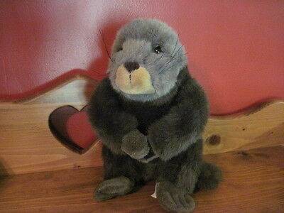 """Cute 11"""" Smithsonian Oceanic Collection Plush OTTER"""