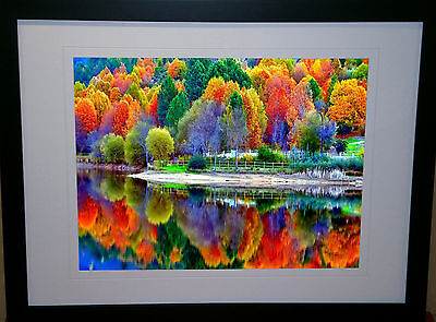 'reflections' Interior Artwork Home Decor Painting Canvas Giclee Print Framed