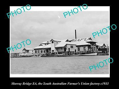 Old Historic Photo Of South Australian Farmers Union Factory, Murray Bridge 1933