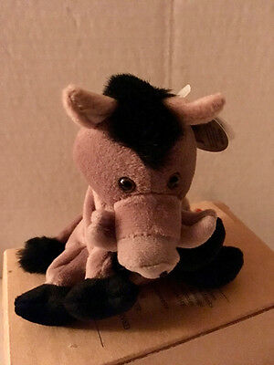 Coca Cola Plush International Beanie Collection 1999 MWMT Lors Wild Boar Italy
