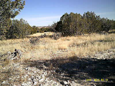 36 Acres Colorado Las Animas County LONGHORN RANCH