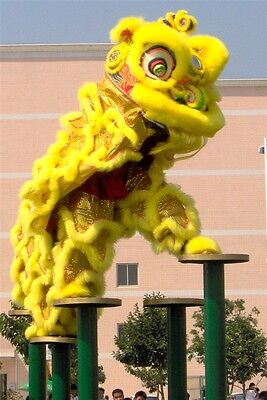 high quality  Lion Dance Costume Natural wool Southern Lion For two Adult