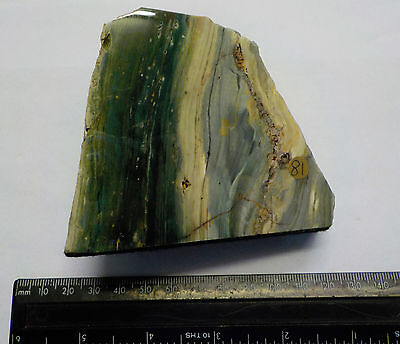 GREEN FOSSIL WOOD from OREGON POLISHED 355g 90mm fa81