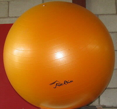 Horse Exercise Ball Free Rein Equestrian 100cm ,