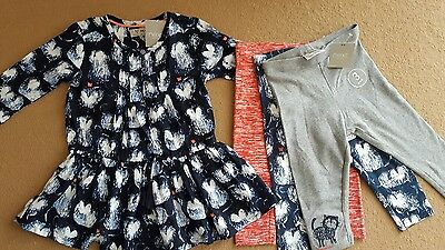 NEXT GIRLS CAT RANGE DRESS AND 3-pack Leggings bundle SIZE 9-12 MONTHS