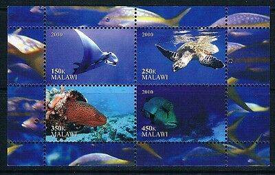 Bloc Sheet Tortues Turtles  Neuf MNH ** Malawi 2010 Private local/issue