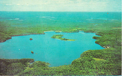 Forest Lodge on High Lake, Boulder Junction WI~Land O' Lakes~Aerial   (c)1964