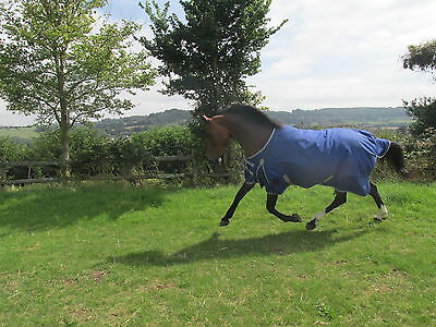 """Final Discount Sale!! 1200D 200grm fill turnout rugs 5'0""""-7'0"""" Horse & Pony"""