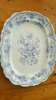 Rare Extra-Large Asiatic Pheasant Transferware Platter 20 in x 16.5 inches