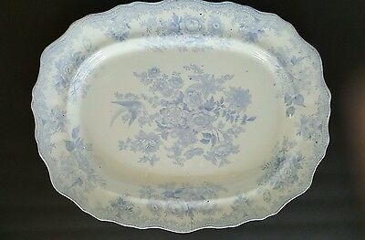 Rare, X-Large English Ironstone Asiatic Pheasant Platter 20 in x 16.5 in.