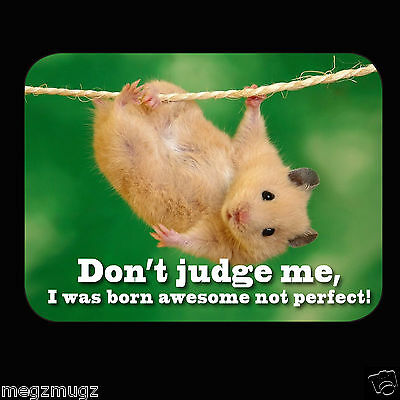 Funny Don't Judge Me I was Born Awesome Not Perfect! Fridge Magnet