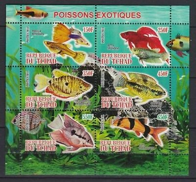 Bloc Sheet Poissons Fish  neuf ** MNH - Tchad 2011  Private / local issues