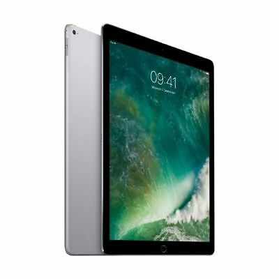 Apple iPad Pro Wi-Fi 256 GB Spacegrau (ML0T2FD/A)
