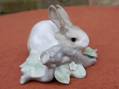 "Lladro ""Rabbit Eating""   #4772"