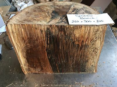 Spalted Beech,Beech Wood Turning Block,spalted Timber,free Delivery