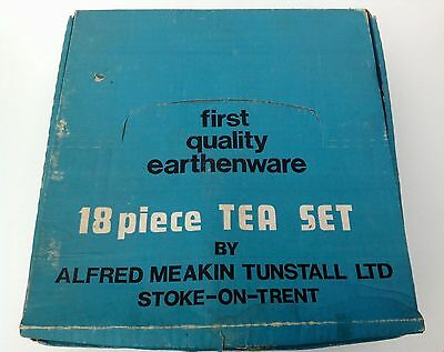 Vintage Alfred Meakin Hedgerow Tea Set in Original Box.18 Pieces.