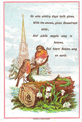 Campbell & Tudhope Victorian Christmas Card Robins On Log Snowdrops Religious