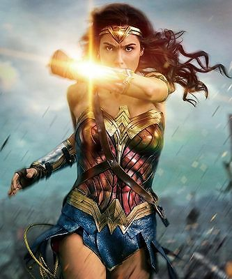 Wonder Woman Art Print Oil Painting On Canvas Home Wall Decor No Frame14 H336