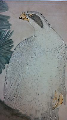 JAPANESE PAINTING: Antique Very Old ARTWORK HAWK Framed Artist