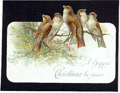 Shaped Victorian Christmas Greetings Card Birds Similar Sparrows