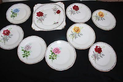 Royal Stafford Bone China 9 Piece Roses To Remember Sandwich Plate Set
