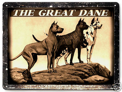 GREAT DANE Dog METAL sign dog pet shop great gift vintage style wall decor 218