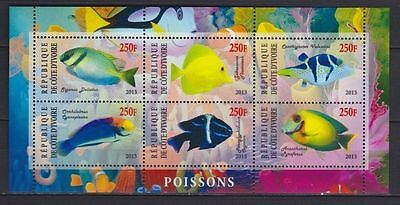 Bloc Sheet  Poissons Exotic Fishes Fish Neuf ** MNH  Côte d'Ivoire 2013