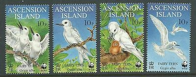 Ascension Island 1999 Fairy Tern set of 4 with WWF Logo MNH