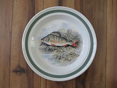 PORTMEIRION~The Compleat Angler British Fishes~Dinner Plate~A F Lydon #6 Perch