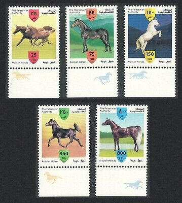 Palestine Arabian Horses 5v with Margins with horses SG#PA134/38