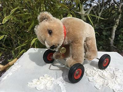 Antique/Vintage  Hermann Teddy Bear on wheels 1960