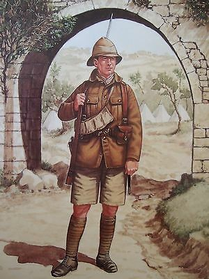 Military Postcard- Pte 5Th Bn Royal Welch Fusiliers Palestine 1917 Bryan Fosten
