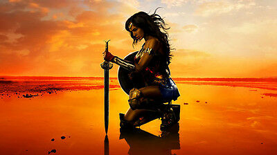 Wonder Woman Home Wall Decor Art Print Oil Painting On Canvas  No Frame 24 H358
