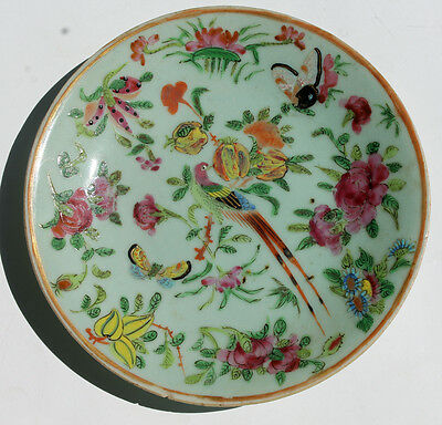Antique Chinese Celadon Famille Rose Verte Plate Bird Flower Butterfly 19th Cent