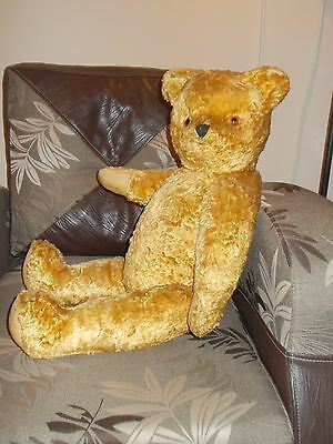 Very large antique Teddy Bear, 1940s,Light Golden Plush, Hard Stuffed,Glass Eyes