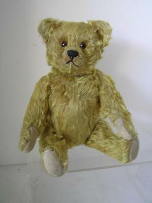 "Vintage Schuco Yes No Teddy Bear 14"" tall lush Honey blonde Mohair 1920's"