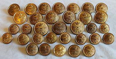 Lot Of 33 Vintage R.c.a.f. Military Uniform Brass Buttons - Large & Small