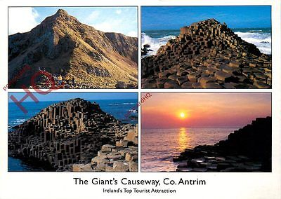 Postcard:-The Giant's Causeway (Multiview)