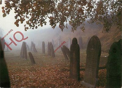 Postcard~ Graveyard, 'All Directions' By Sarah Montgomery